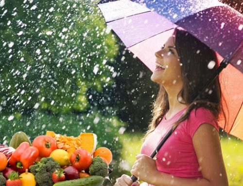 Healthy diet on rainy season