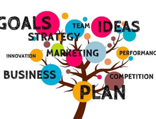 What business strategy you should choose to grow?